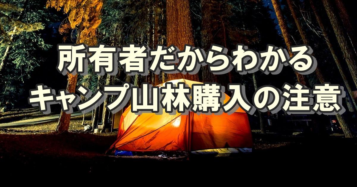 所有者だからわかる、ソロキャンプ用山林購入の注意点