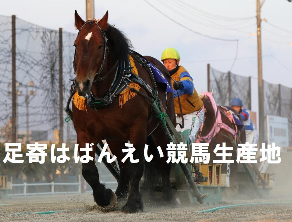 """北海道帯広市の""""ばんえい十勝"""""""