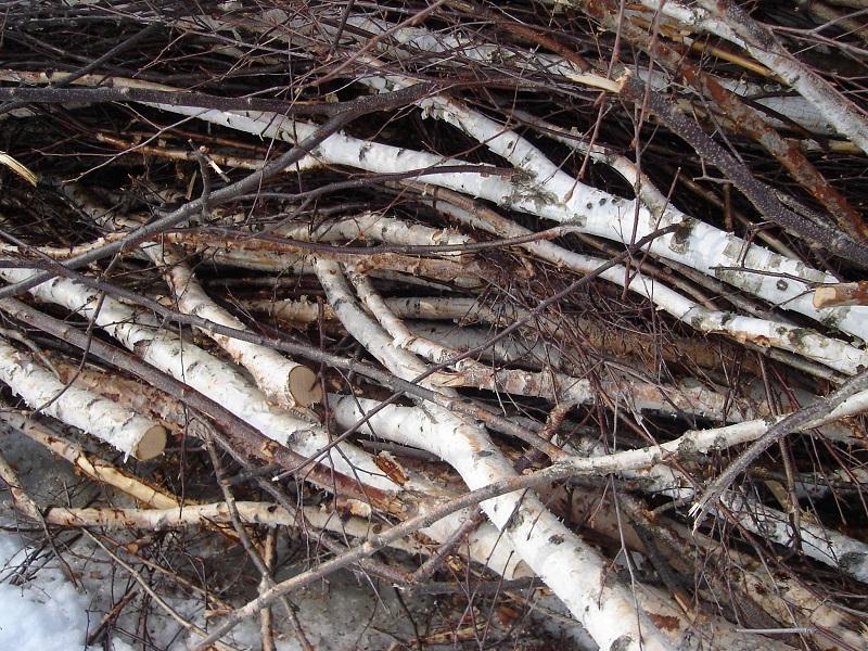 伐採後に山に放置される使用されない木材(未利用木材)を原料に使用して余すとこなく資源を使おうとする取り組みを始めてます。