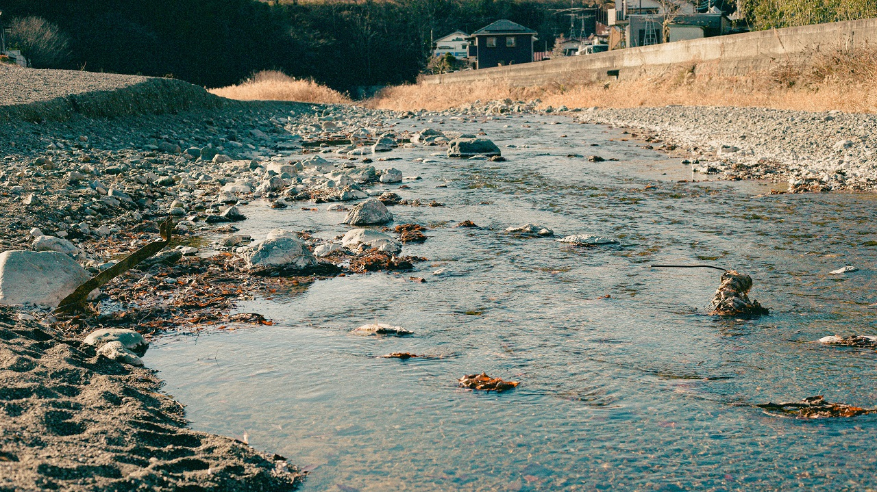 水質の悪化は広域的に悪影響を及ぼします。