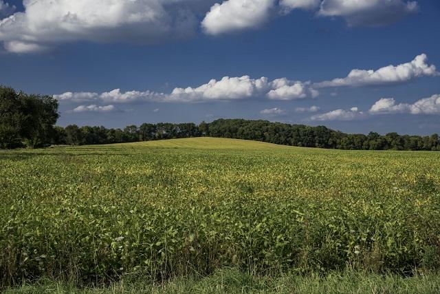 農地は作物収穫を目的に人力で農耕し、作付け収穫し生産します。