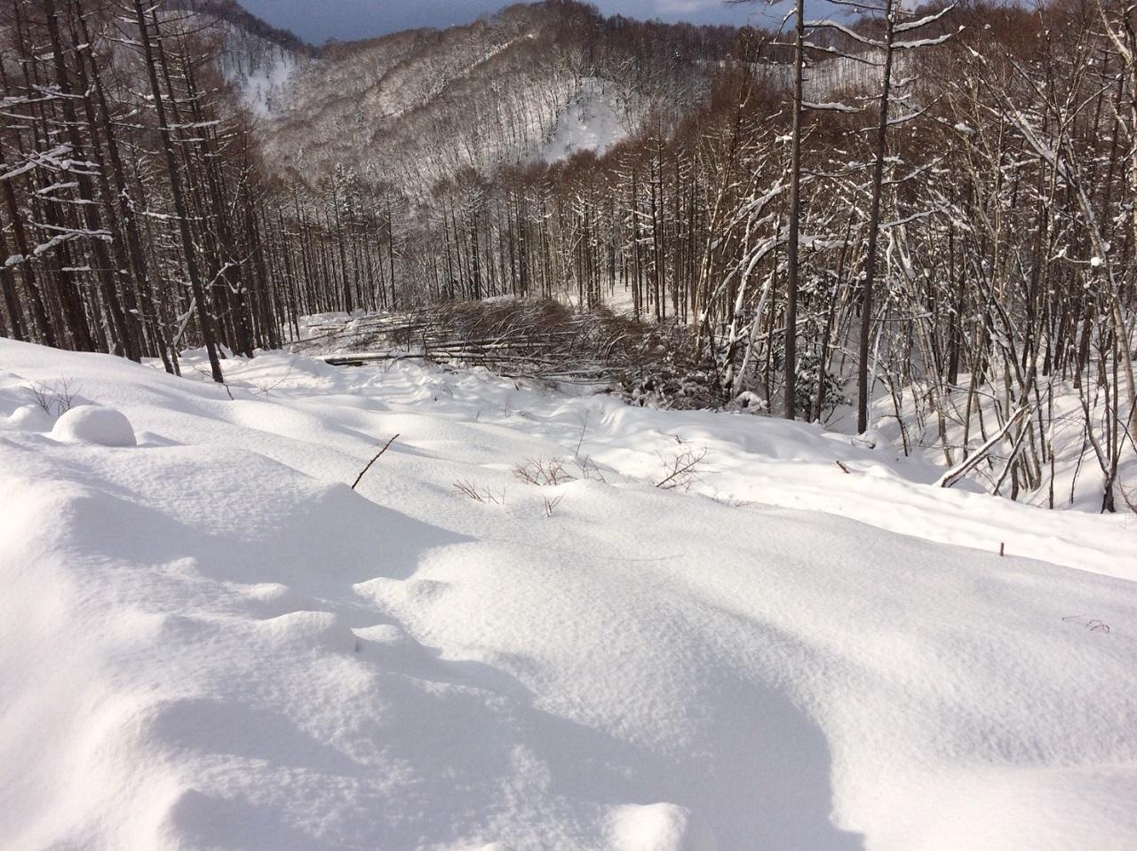 豪雪地帯は除雪が必要で林道も痛みが激しいです。